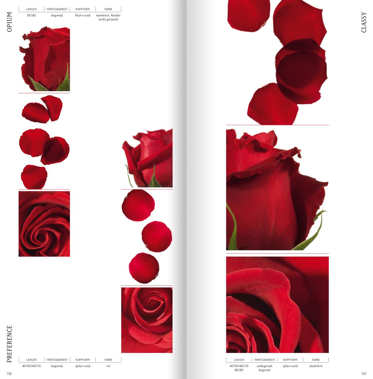 rosen8